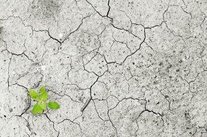 cambiamento-climatico-globale