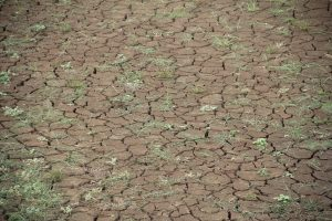 surriscaldamento-globale-conseguenze