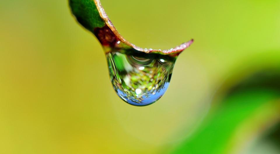 Impianto di irrigazione risparmiare acqua e rispettare l for Sistemi di irrigazione giardino