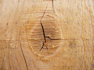 Tipi-di-legno-abete